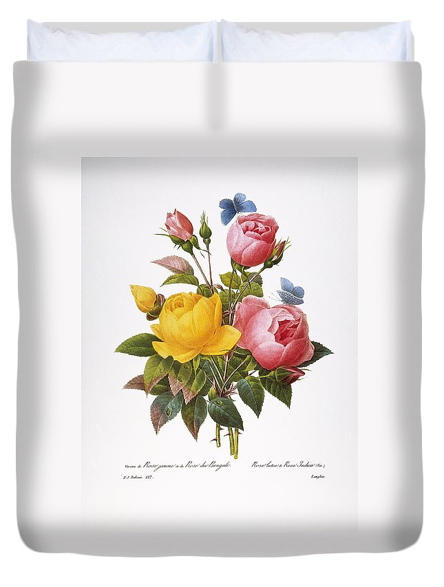 1833 Duvet Cover featuring the photograph Redoute: Roses, 1833 by Granger