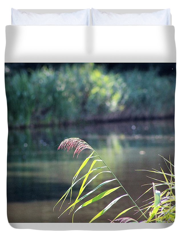 Reed Duvet Cover featuring the photograph Reed by Barend Van Wieringen