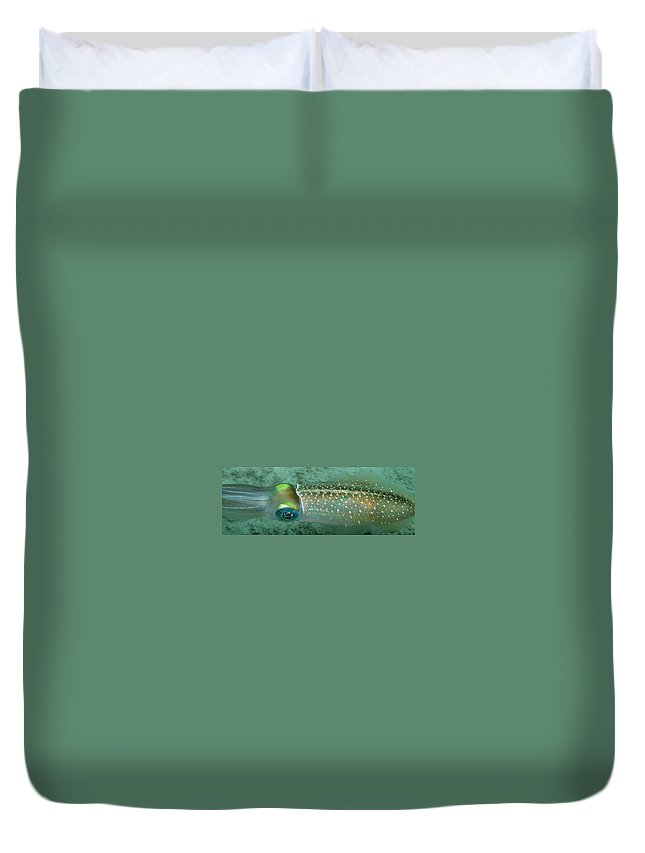 Underwater Duvet Cover featuring the photograph Reef Squid by Kimberly Mohlenhoff