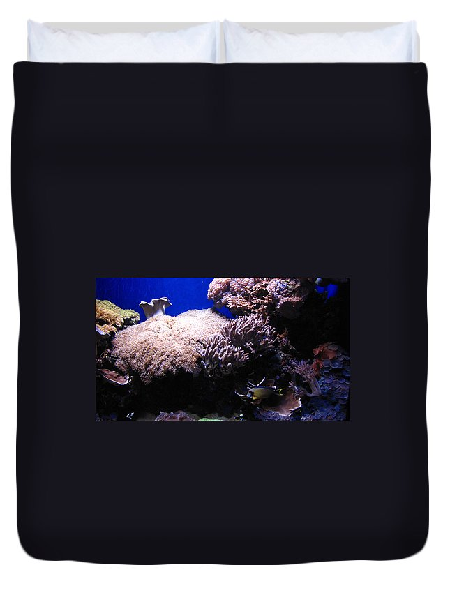 Reef Duvet Cover featuring the photograph Reef Tank by Sarah Houser