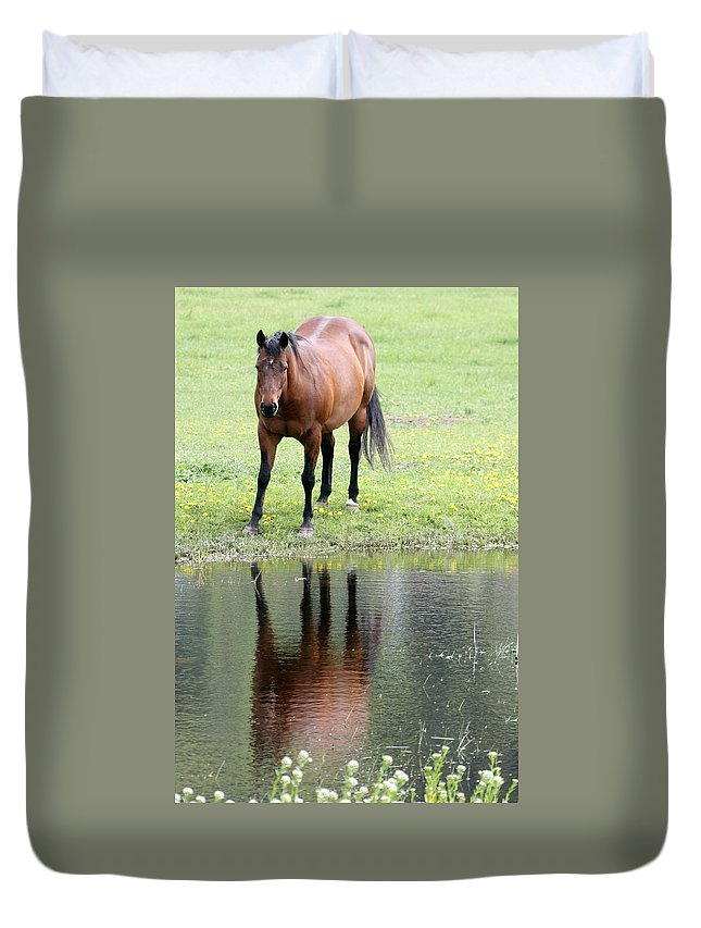 Horse Duvet Cover featuring the photograph Reflecting Horse Near Water by Tiffany Vest