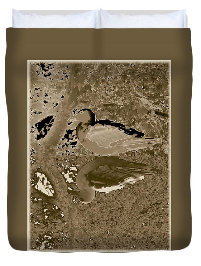 Sea Gull Duvet Cover featuring the photograph Reflecting by Tim Allen