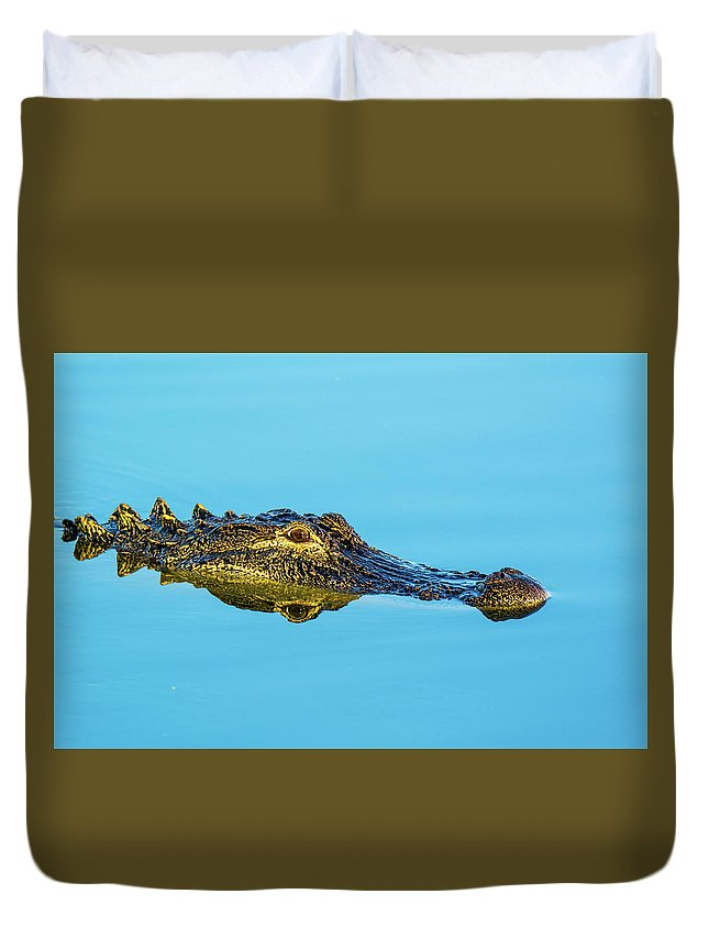 Alligator Duvet Cover featuring the photograph Reflective Gator by John Ruggeri