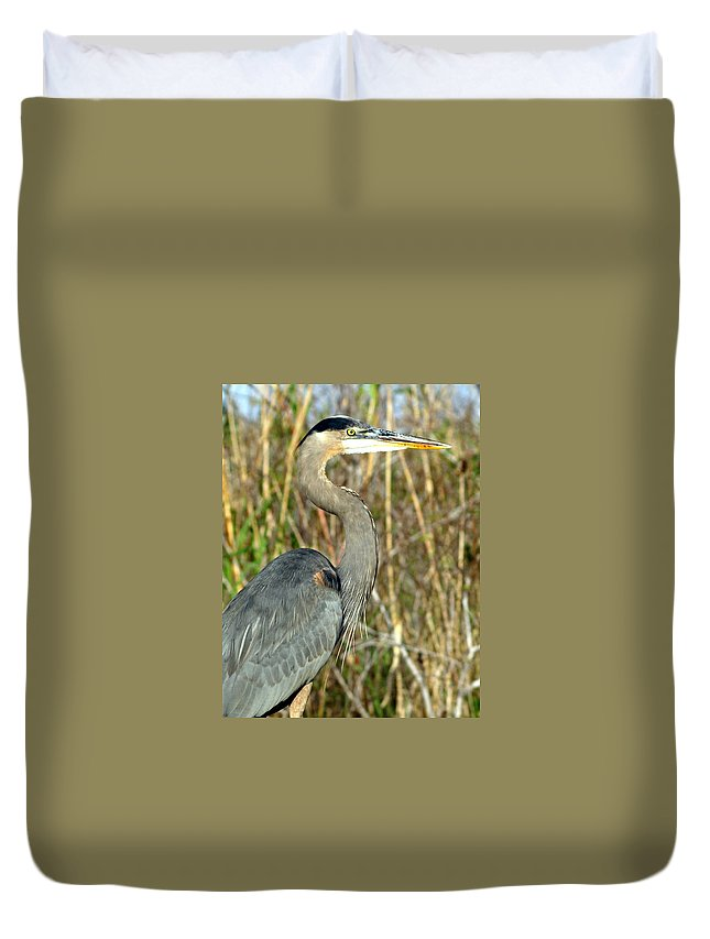 Heron Duvet Cover featuring the photograph Regal Heron by Marty Koch