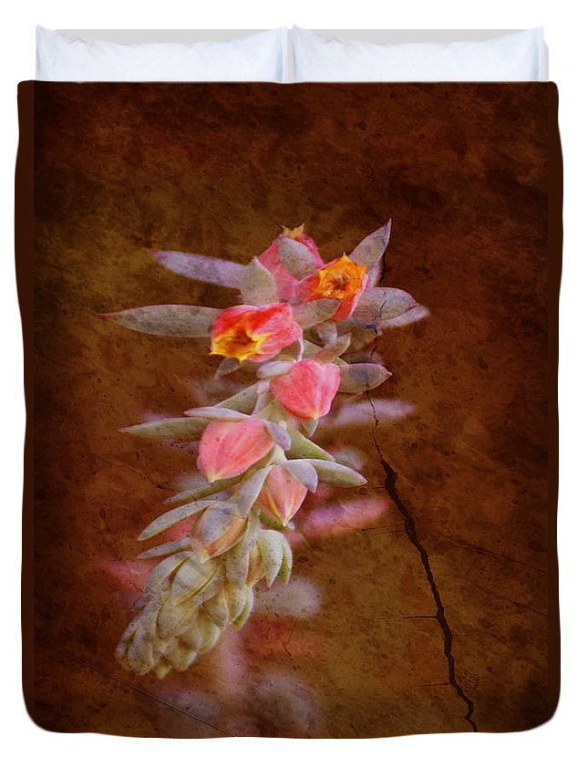 Flowers Duvet Cover featuring the photograph Regrowth by Holly Kempe