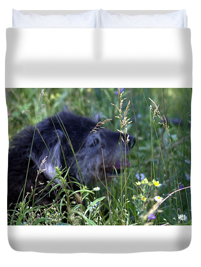 Dog Duvet Cover featuring the photograph Relaxing by Tracy Skinner