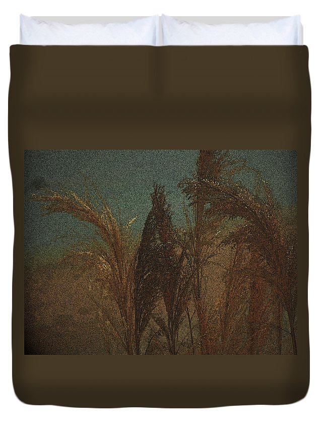 Abstract Duvet Cover featuring the photograph Remembering Rembrandt by Lenore Senior
