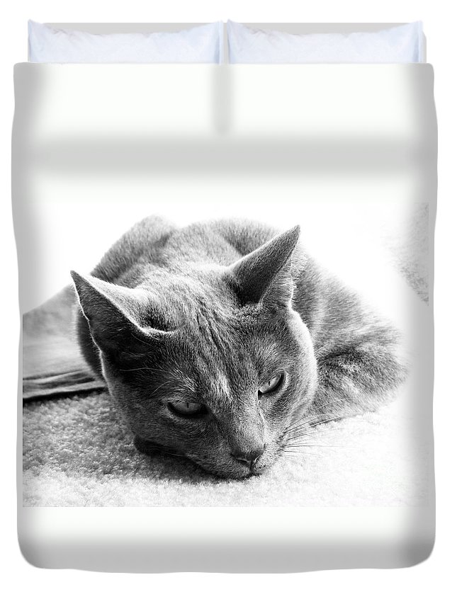 Cats Duvet Cover featuring the photograph Resting by Amanda Barcon