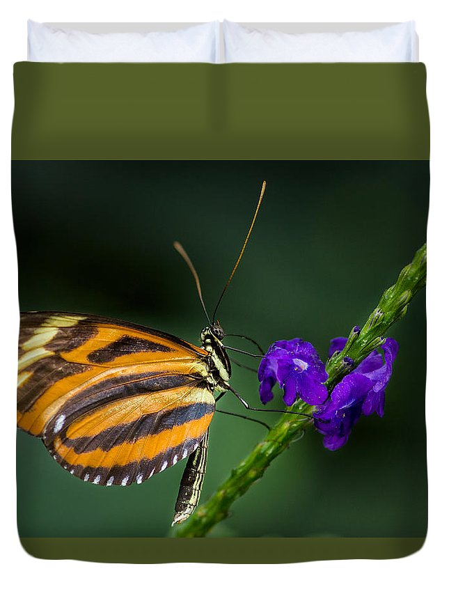 Acrylic Print Duvet Cover featuring the photograph Resting Beauty by Garvin Hunter