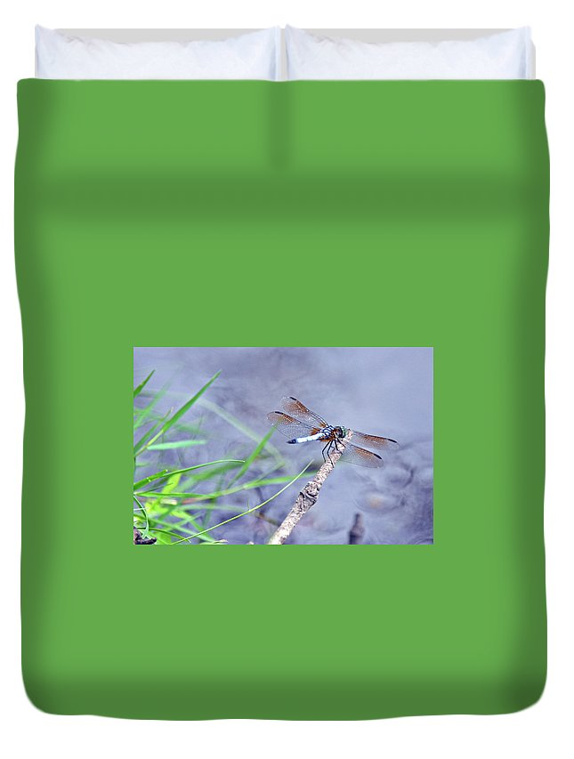 Nature Duvet Cover featuring the photograph Resting Dragonfly by Kay Lovingood