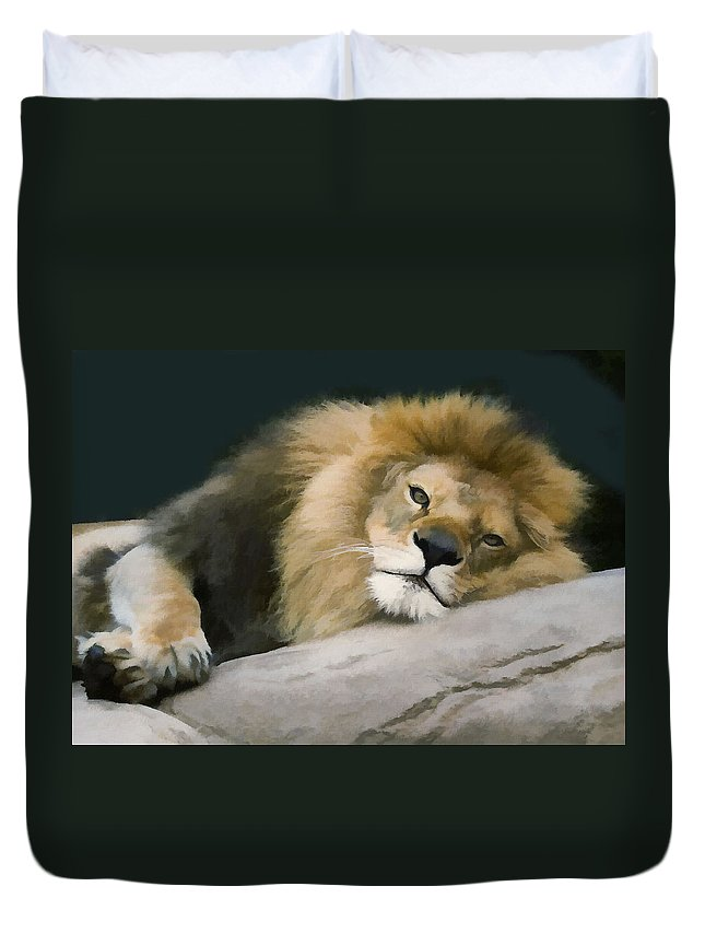 Lion Duvet Cover featuring the photograph Resting Lion by Sharon Foster