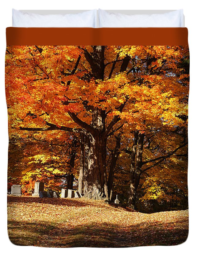 Resting Under Maples Duvet Cover featuring the photograph Resting Under Maples by Rachel Cohen