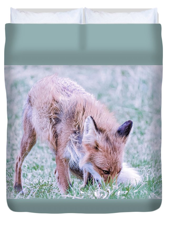 Rev Duvet Cover featuring the photograph Rev by Roy Haakon Friskilae