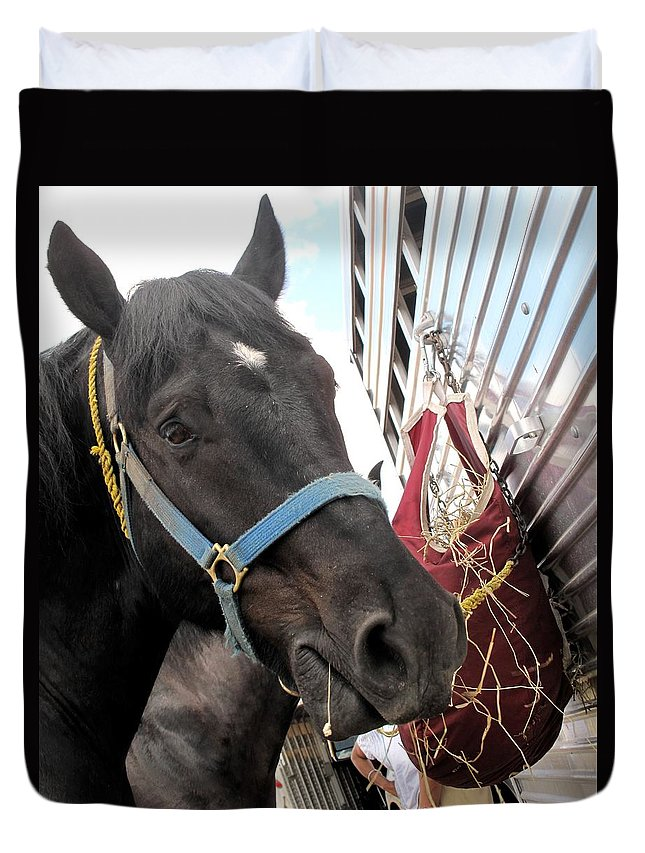 Horse Duvet Cover featuring the photograph Reward For A Job Well Done by Ian MacDonald