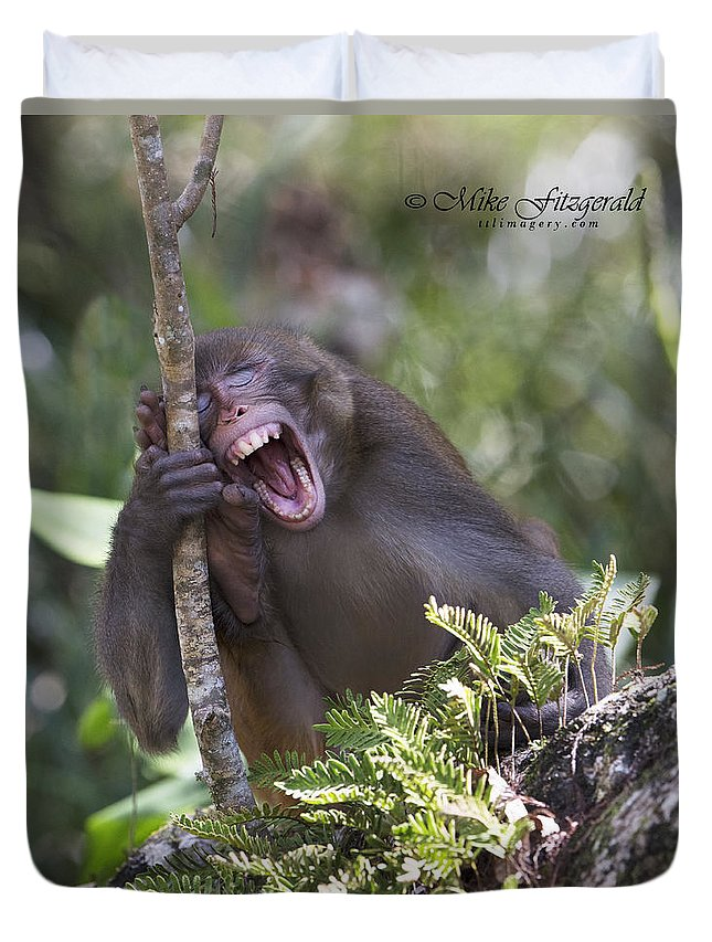 Florida Duvet Cover featuring the photograph Rhesus Laughing by Mike Fitzgerald