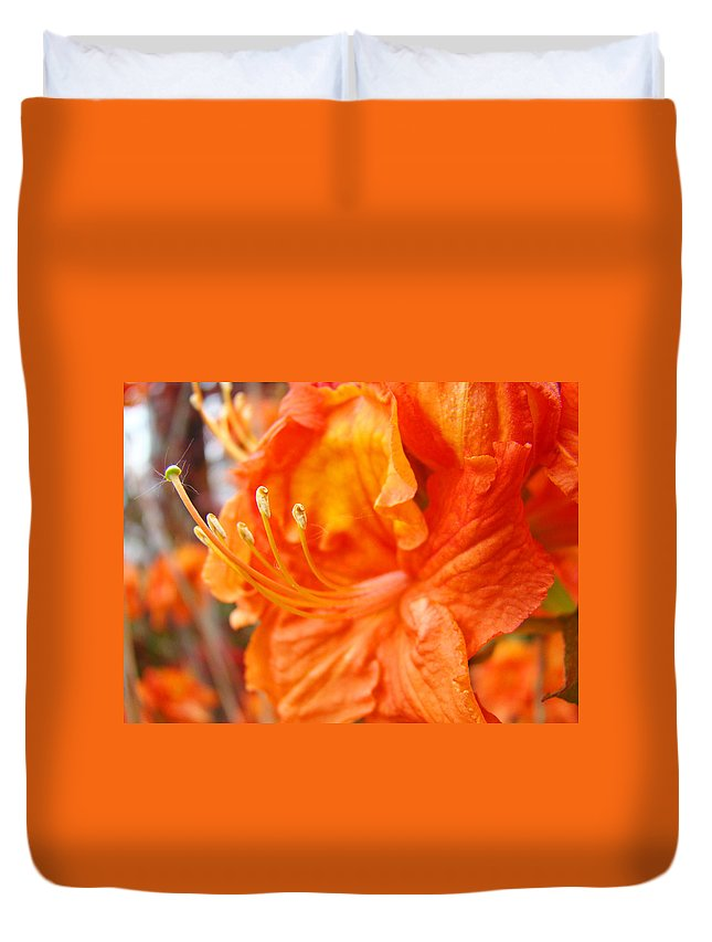 Rhodie Duvet Cover featuring the photograph Rhodies Art Prints Orange Rhododendron Flowers Baslee Troutman by Baslee Troutman