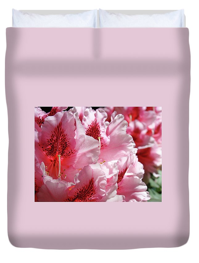 Rhodies Duvet Cover featuring the photograph Rhodies Pink Fine Art Photography Rhododendrons Baslee Troutman by Baslee Troutman