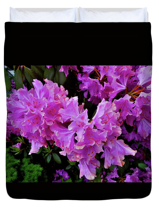 Still Life Duvet Cover featuring the photograph Rhododendron Pink by Mark Victors