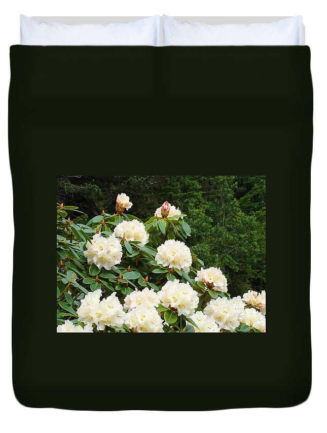 Rhodies Duvet Cover featuring the photograph Rhododendrons Floral Landscape Art Prints Baslee Troutman by Baslee Troutman