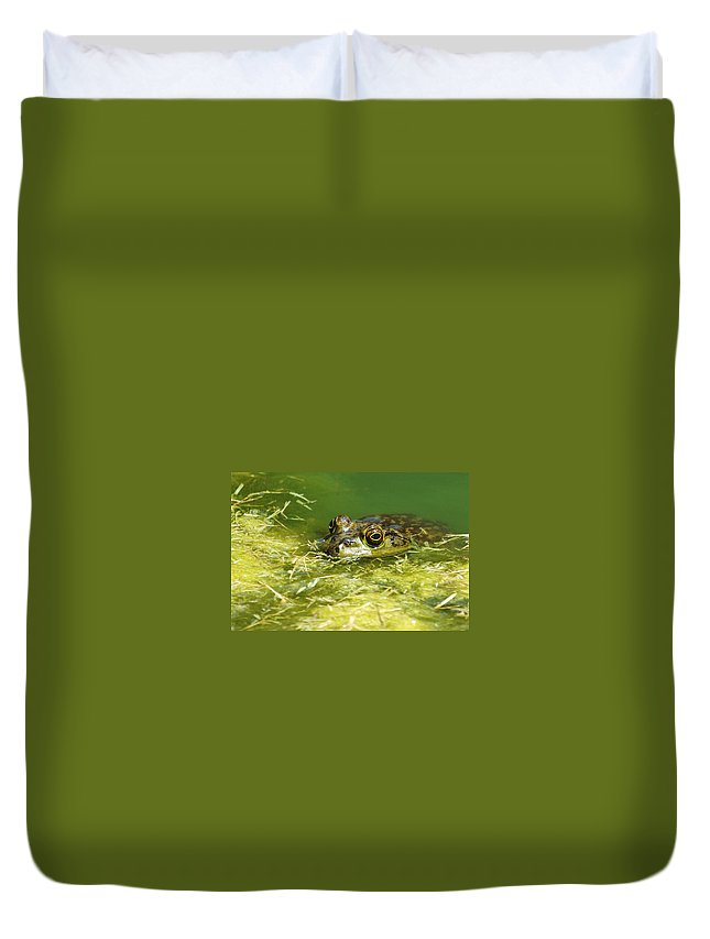 Frog Duvet Cover featuring the photograph Ribbit by Jill Reger