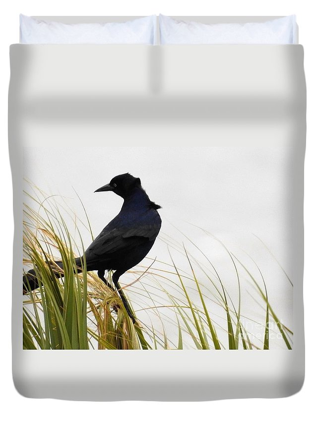 Birds Duvet Cover featuring the photograph Riding The Wind by Jan Gelders