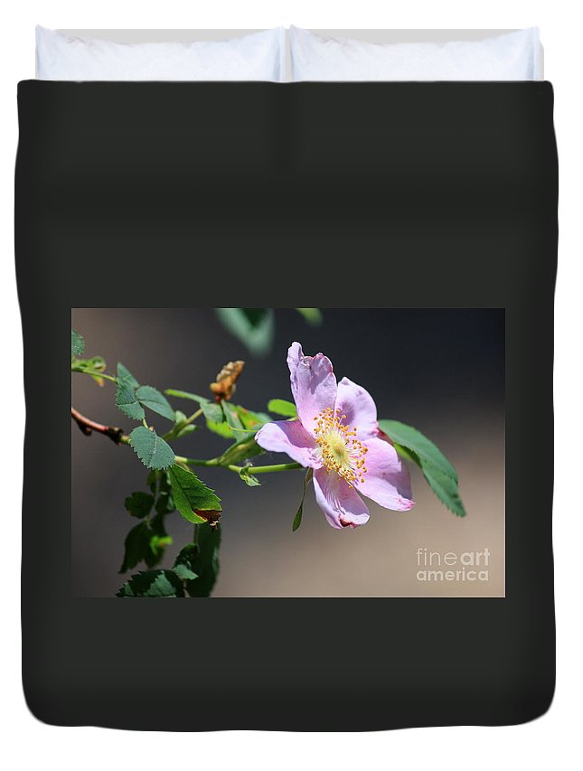 Floral Duvet Cover featuring the photograph Rimrock Rose by Carol Groenen