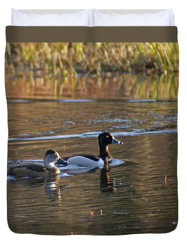 Duck Duvet Cover featuring the photograph Ring Necked Duck by Heather Coen