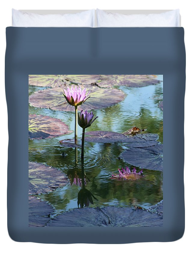Pink Water Lilies Duvet Cover featuring the photograph Ripples and Pink Lilies by John Lautermilch
