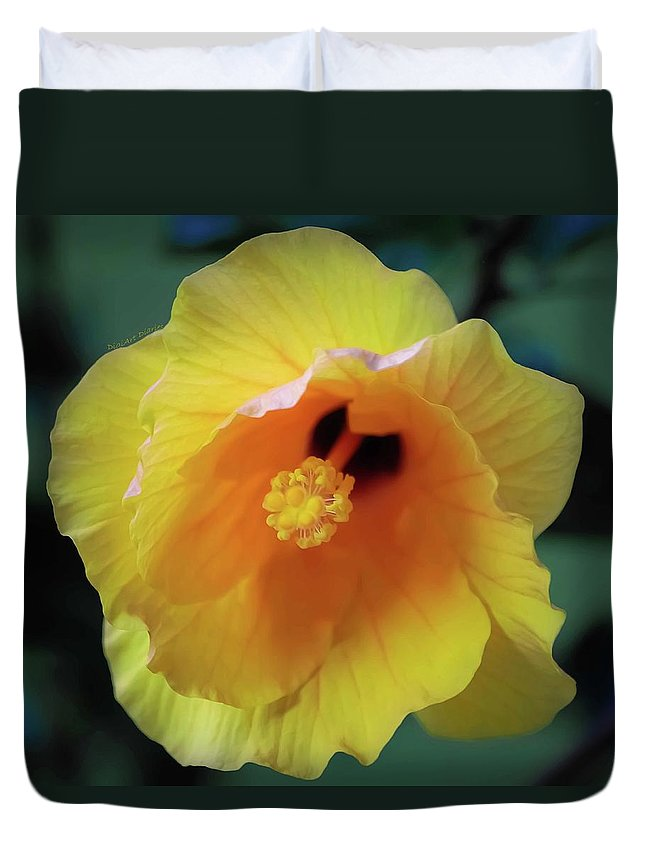 Hibiscus Duvet Cover featuring the photograph Rising In The Sun by DigiArt Diaries by Vicky B Fuller