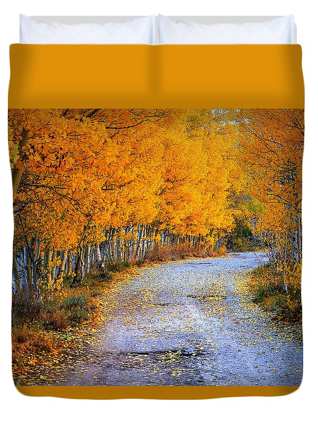 Road Duvet Cover featuring the painting Road Between Trees by Galeria Trompiz