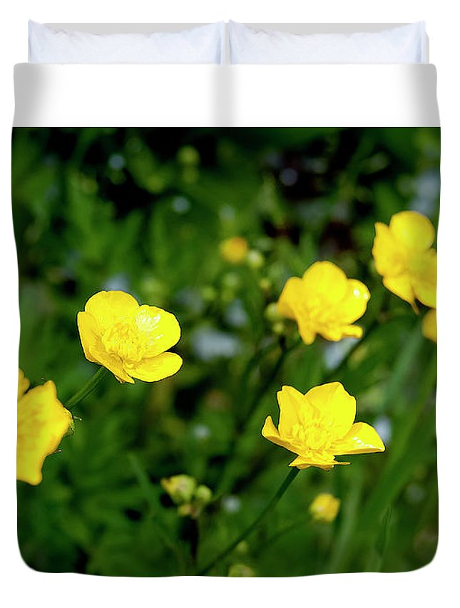 Yellow Flowers Duvet Cover featuring the photograph Road Of Flowers by Nat Air Craft