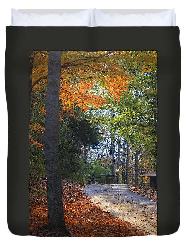 Cabin Duvet Cover featuring the photograph Road To Cabin 2 by Teresa Mucha