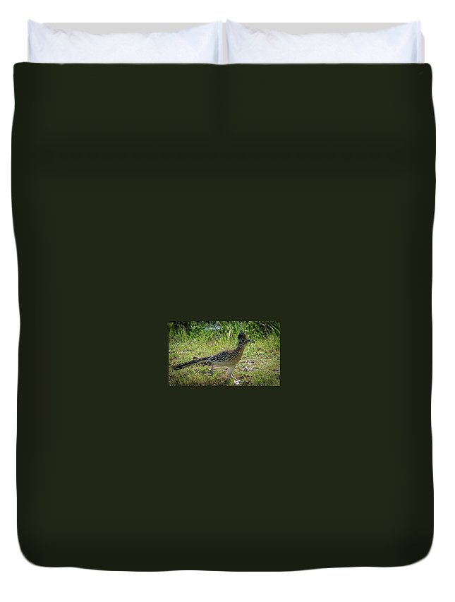 Road Runner Duvet Cover featuring the photograph Roadrunner by Charles Stackpole