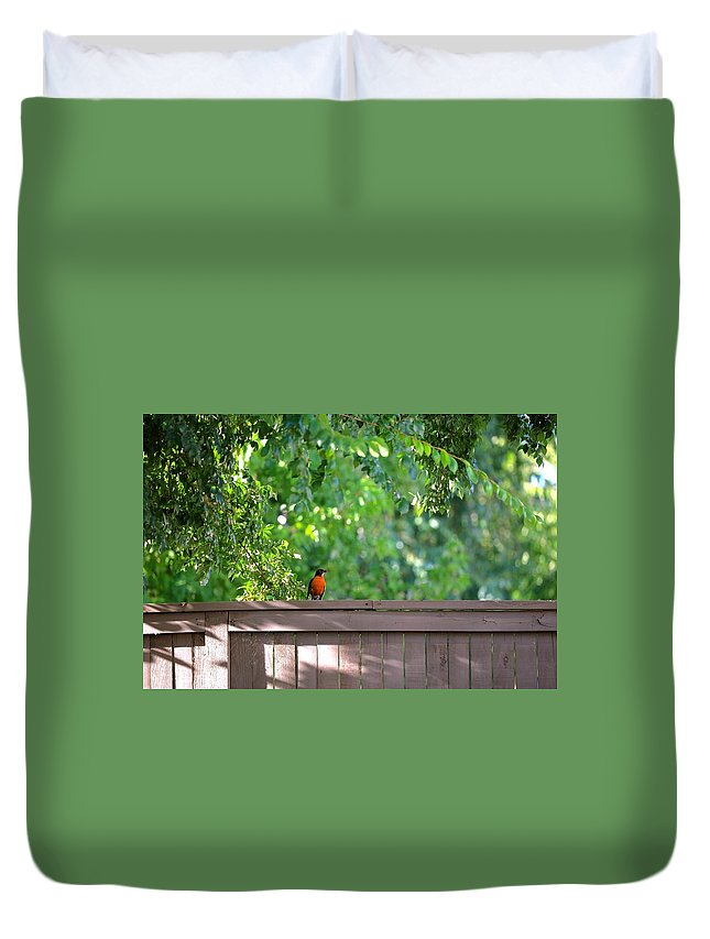 Bird Duvet Cover featuring the photograph Robin On The Backyard Fence by DUG Harpster