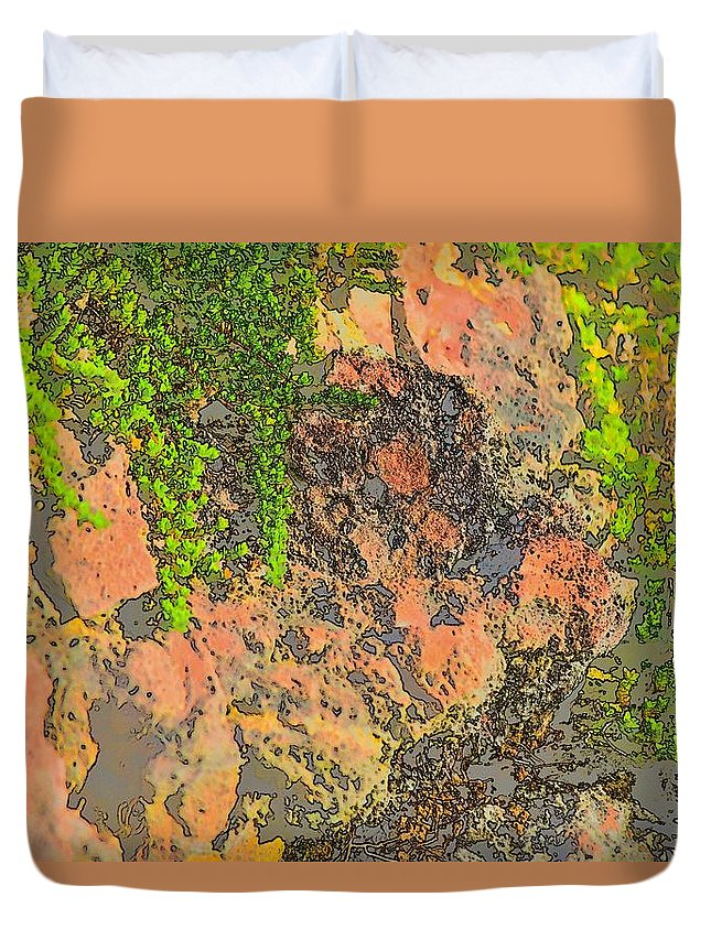 Linda Brody Duvet Cover featuring the photograph Rock And Shrub Abstract I by Linda Brody