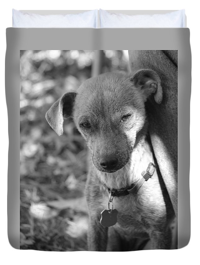 Black And White Duvet Cover featuring the photograph Rocky by Jesus Morales