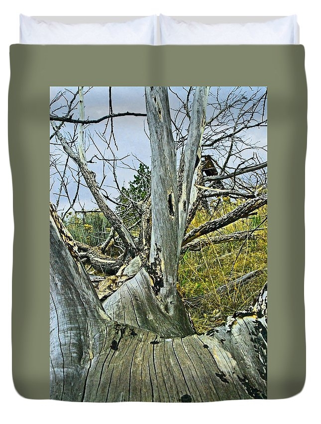 Dead Duvet Cover featuring the photograph Rolling Log by Sara Stevenson