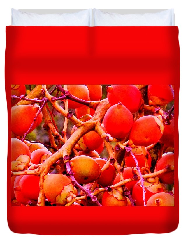 Red Duvet Cover featuring the photograph Romney Red by Ian MacDonald