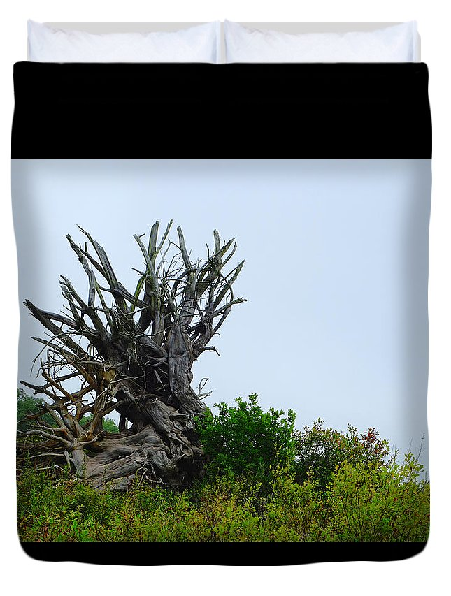 Twisted Duvet Cover featuring the photograph Root Of The Matter by Andrew Mits
