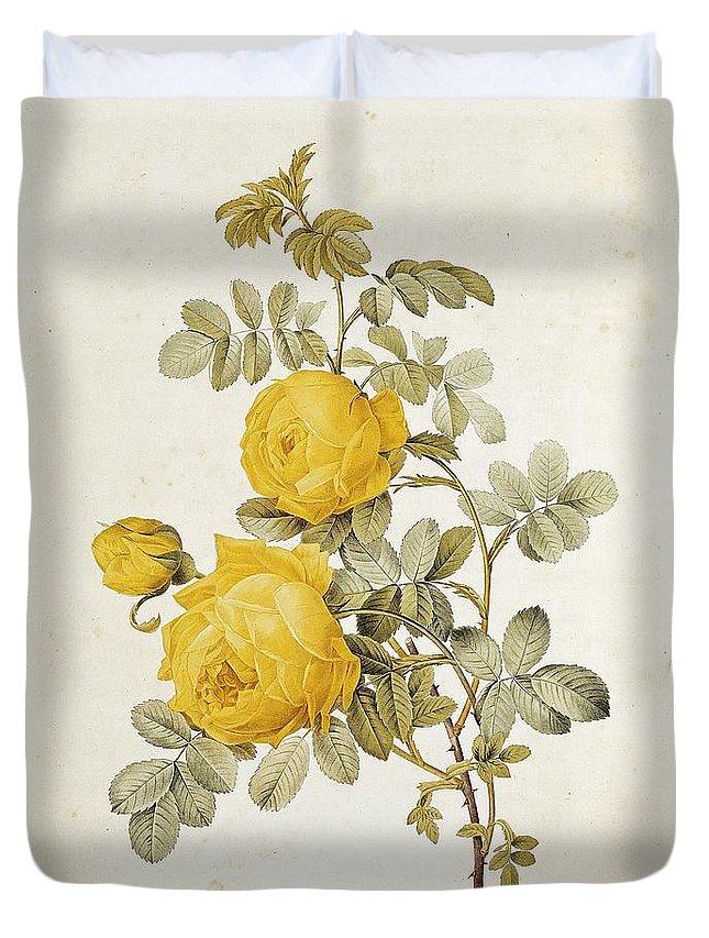 Blooms Drawings Duvet Covers
