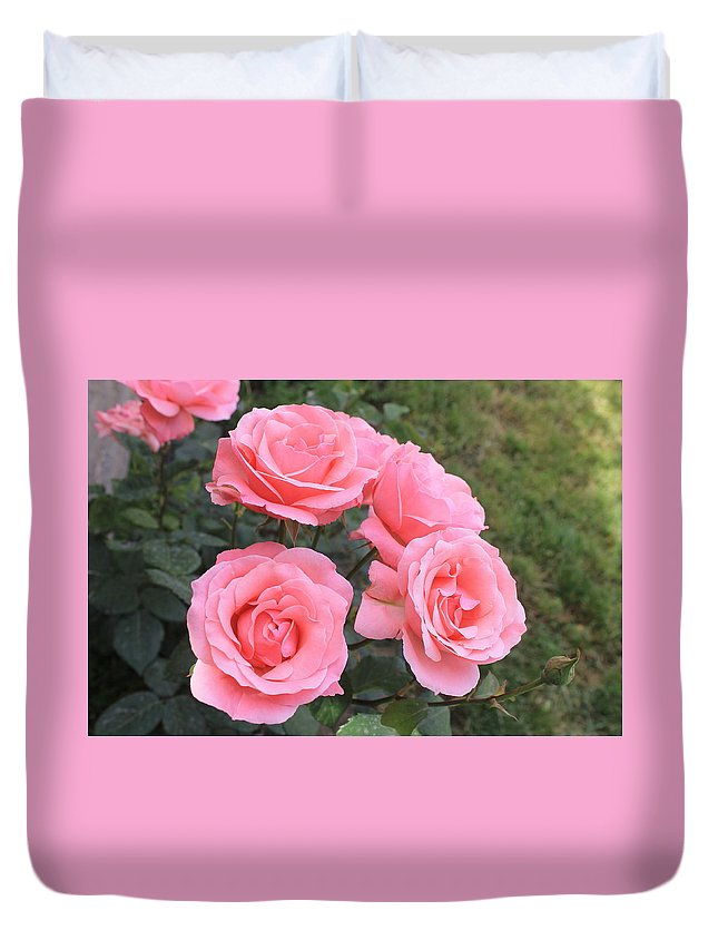 Flower Duvet Cover featuring the photograph Rose by Armen Kirakosyan