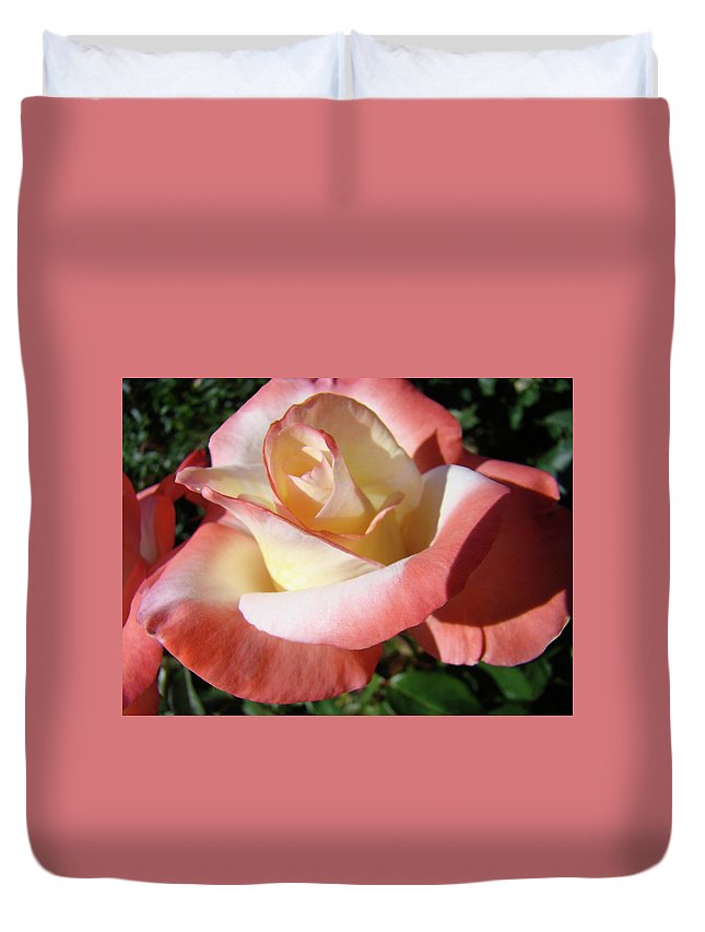 Rose Duvet Cover featuring the photograph Rose Artwork Floral Pink White Roses Baslee Troutman by Baslee Troutman