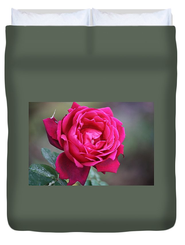 Floral Duvet Cover featuring the photograph Rose by Donna Walsh
