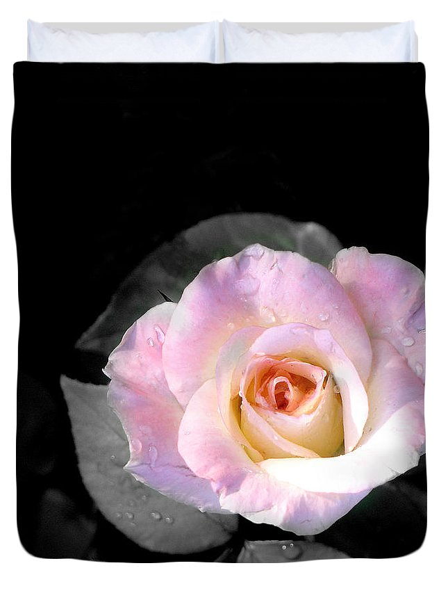 Princess Diana Rose Duvet Cover featuring the photograph Rose Emergance by Steve Karol