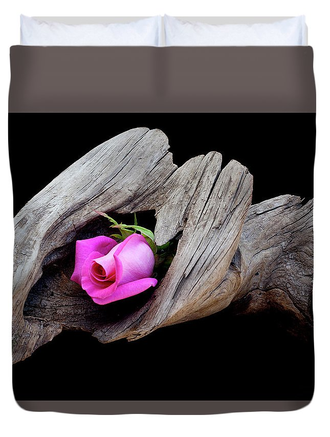 Rose Duvet Cover featuring the photograph Rose In Driftwood 2 by George Sanquist
