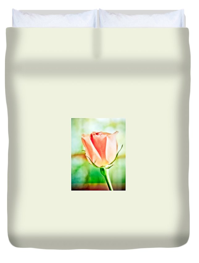 Rose Duvet Cover featuring the photograph Rose In Window by Marilyn Hunt