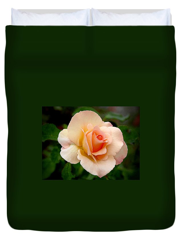One Duvet Cover featuring the photograph Rose is a Rose is a Rose by Alexandra Till