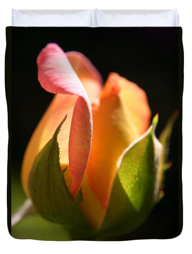 Rosebud Duvet Cover featuring the photograph Rosebud by Ralph A Ledergerber-Photography