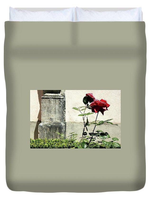 Flower Duvet Cover featuring the photograph Rosebush by Raquel Daniell