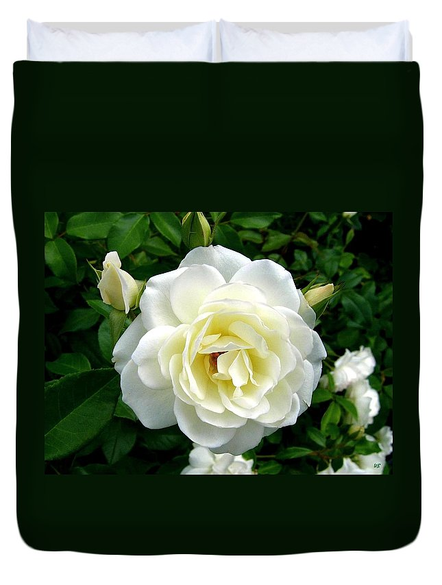 Rose Duvet Cover featuring the photograph Roses 2 by Will Borden
